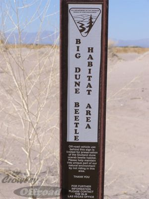 Big Dune Beetle Sign