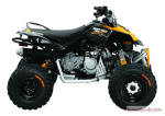2011 Can-Am DS 90X