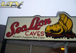 Sea Lion Caves - North of Florence